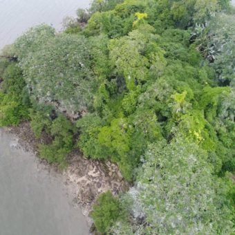 """Haunted"" island in the Paraná shore hides Indian cemetery and intrigues scientists"