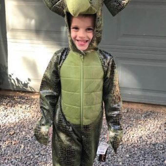 After losing dinosaur collection in fire, boy received over 100 toys by mail