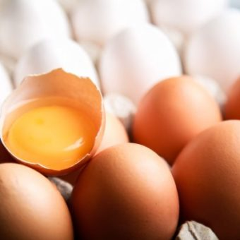 """Are eggs bad for you?""; here's how to identify fake news about health"