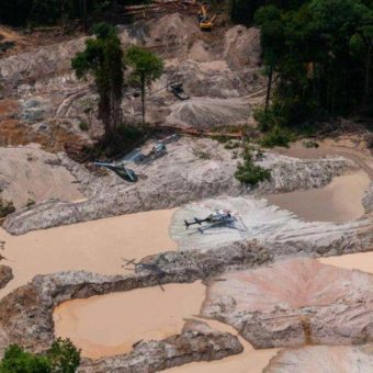Amazon out of control: illegal mining extracts 30 tons of gold each year