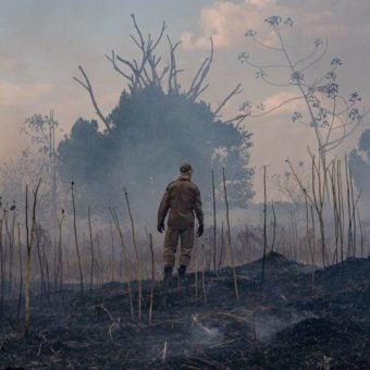 Number of fires in the Amazon plummet, and is the smallest in six years
