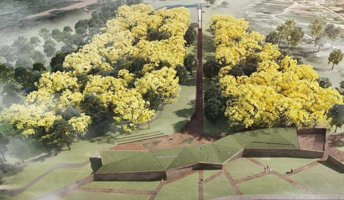 Memorial for Brumadinho victims will have forest with 272 yellow ipê trees