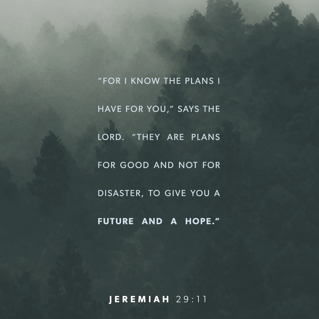 """Excepcional Jeremiah 29:11 NIV; For I know the plans I have for you,"""" declares  AA01"""