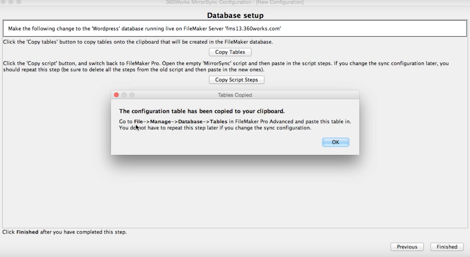 FileMaker Database Setup. Copy to your clipboard and paste.