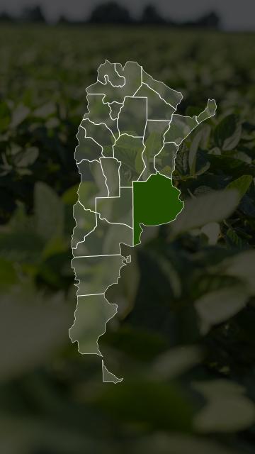 Campos en Buenos Aires