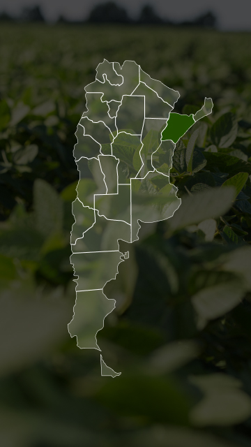 Campos en Corrientes