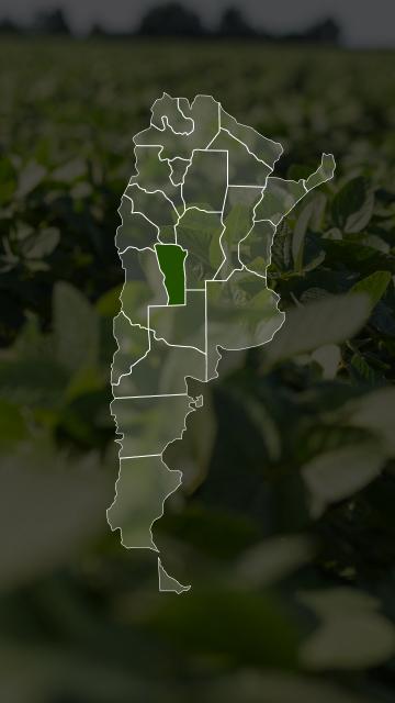 Campos en San Luis