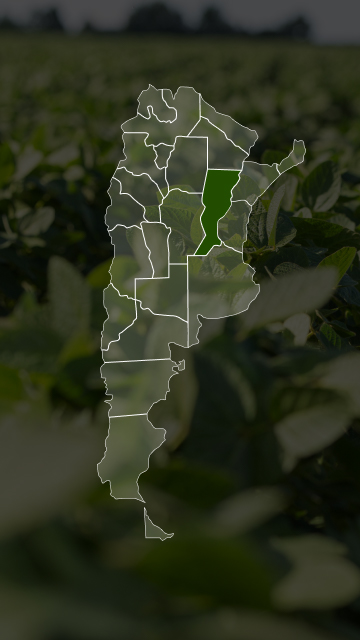 Campos en Santa Fé