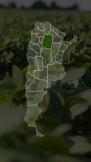 Campos en Santiago del Estero
