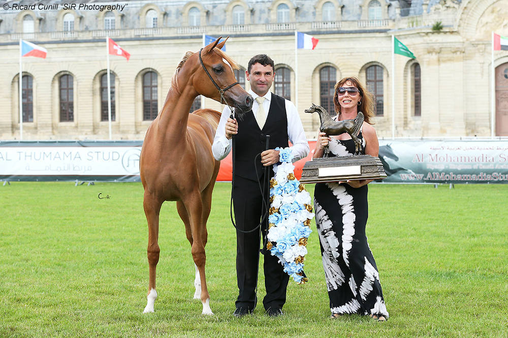 AHO World Cup Chantilly 2016
