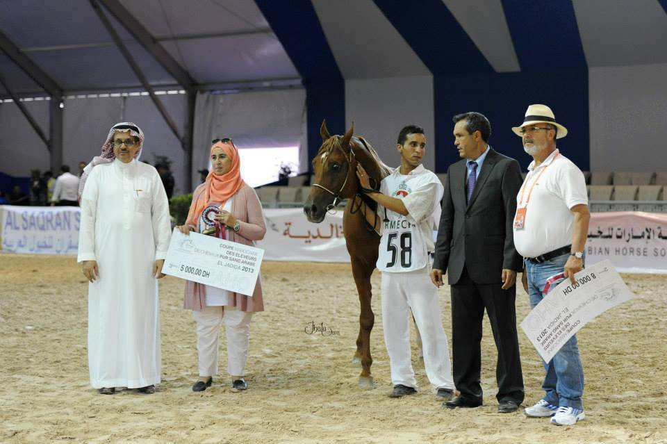 AHO Breeders' Championship Morocco 2013