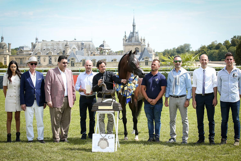 QS Marzio, Gold Champion Stallion