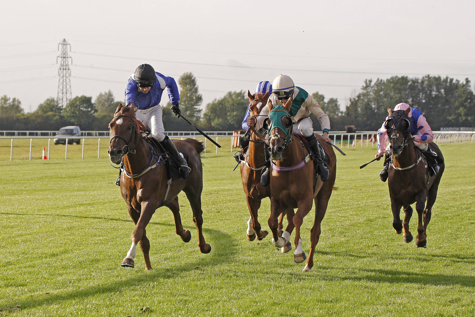 AHO sponsoring the UK Arabian Racing Bronze, Silver and Gold Finals - 2017