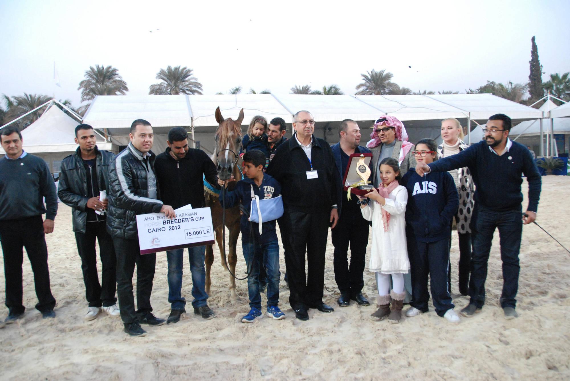 AHO Breeders' Championship Egypt 2012