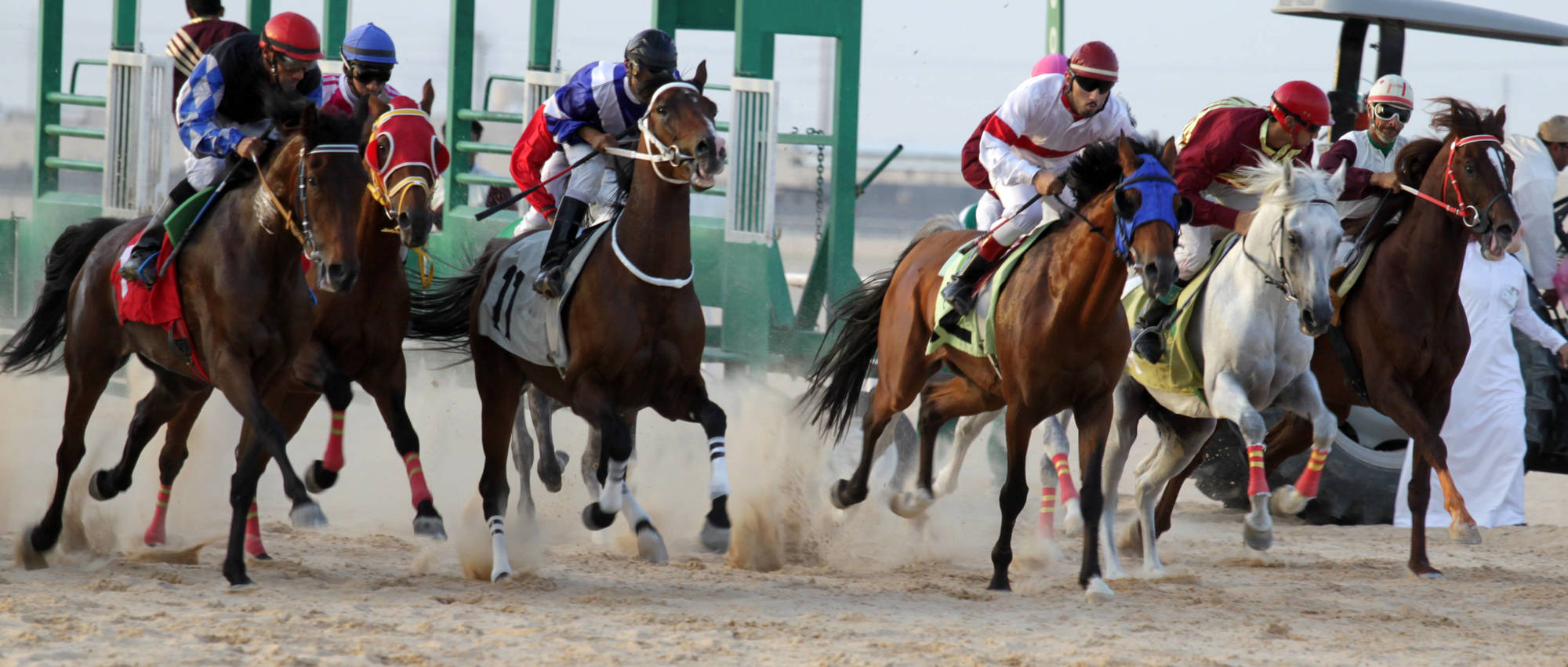 AHO Flat Race, Al Ahsaa, KSA, 2014