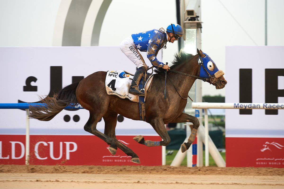 2017 Dubai Kahayla Classic - Reda