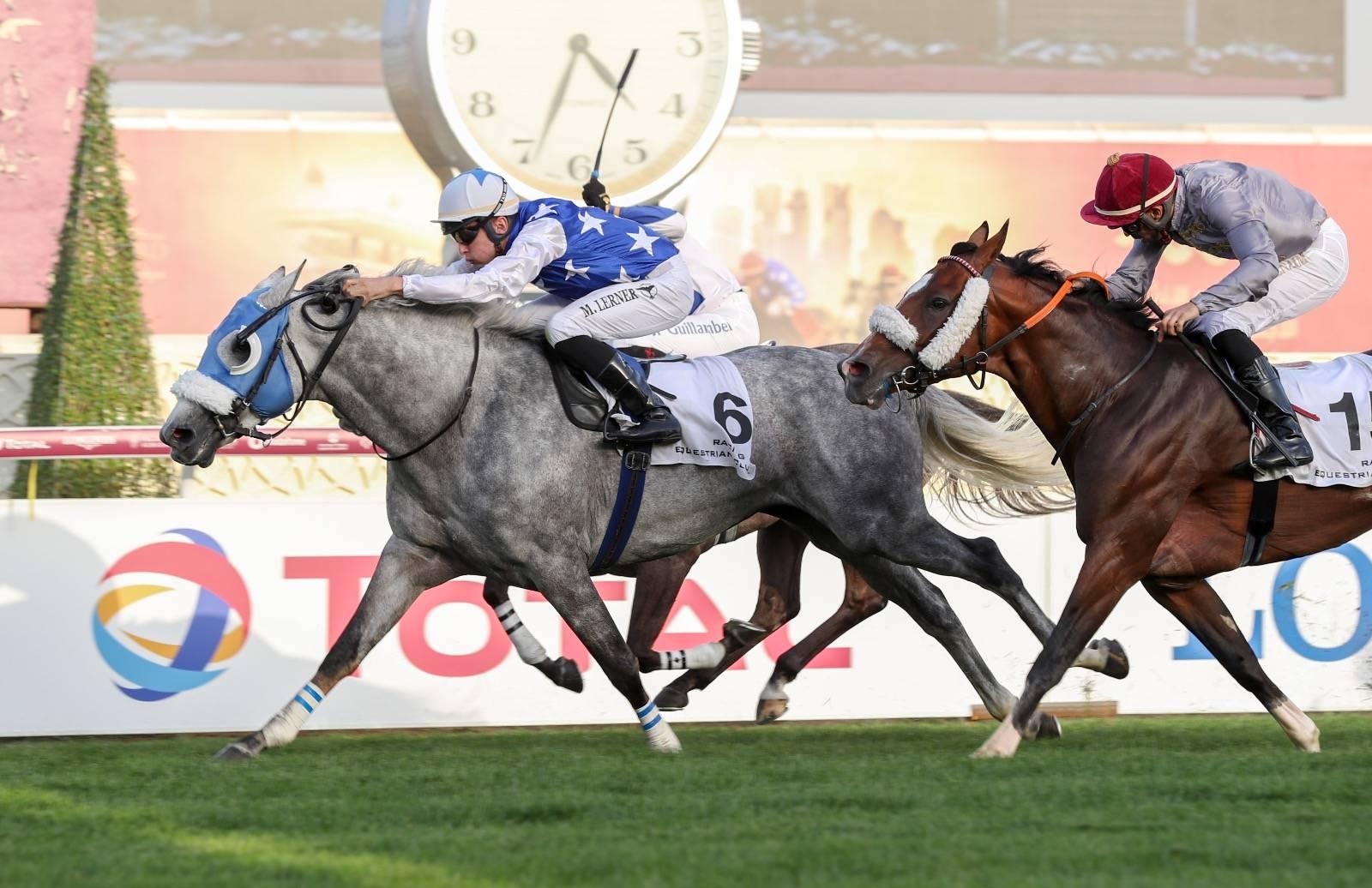 Purebred Arabian Maiden Plate Hatem Al Shahania Stud Doha Qatar Horse Racing Race Horses