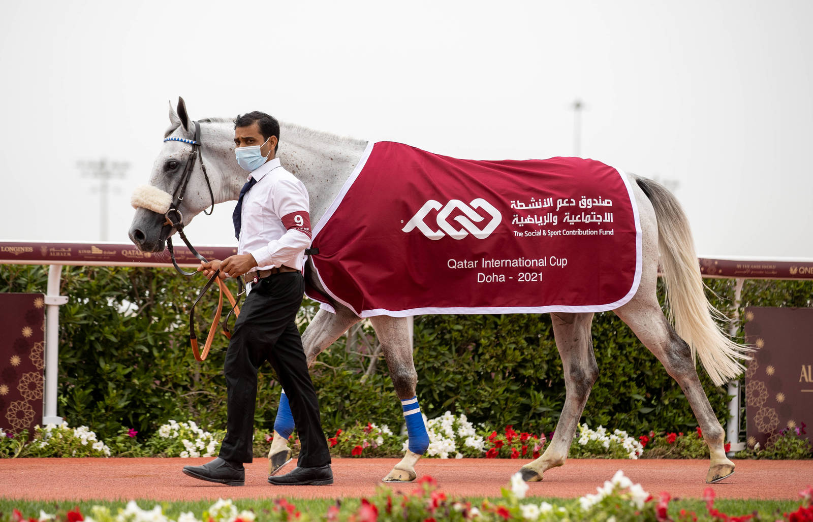 Methgal, winner of the Qatar International Cup Gr1PA for the second year in a row