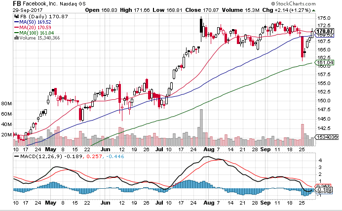 FB stock Technical chart showing 20-day,50-day and 100-day SMAs along with MACD indicator.