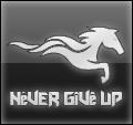 never gîvê up