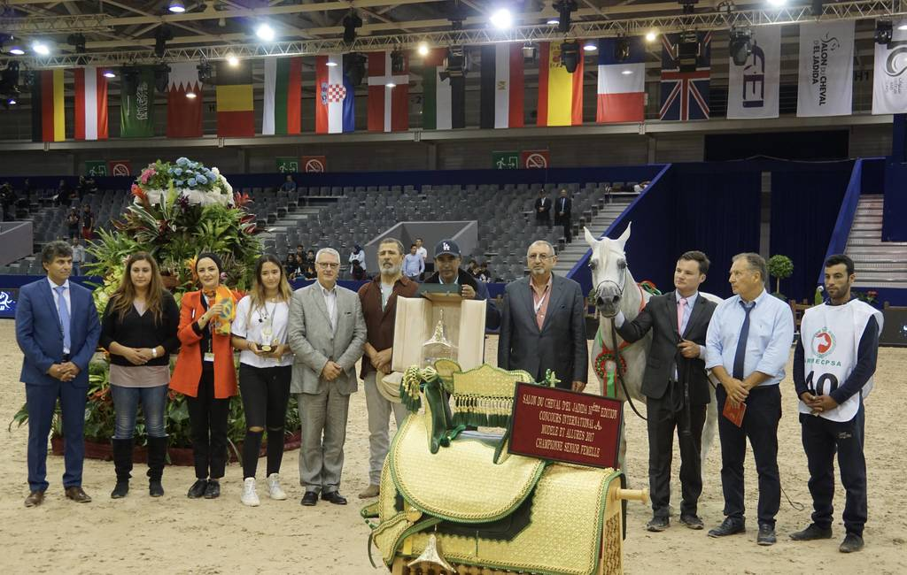 Champion Sr. Mare in Morocco at the Salon du Cheval d'El Jadida. Valodia De Lafon by Shanghai EA and out of Vassilia bred by Mas De Lafon and owned by Mr. Abdulmajid Aboukhadija
