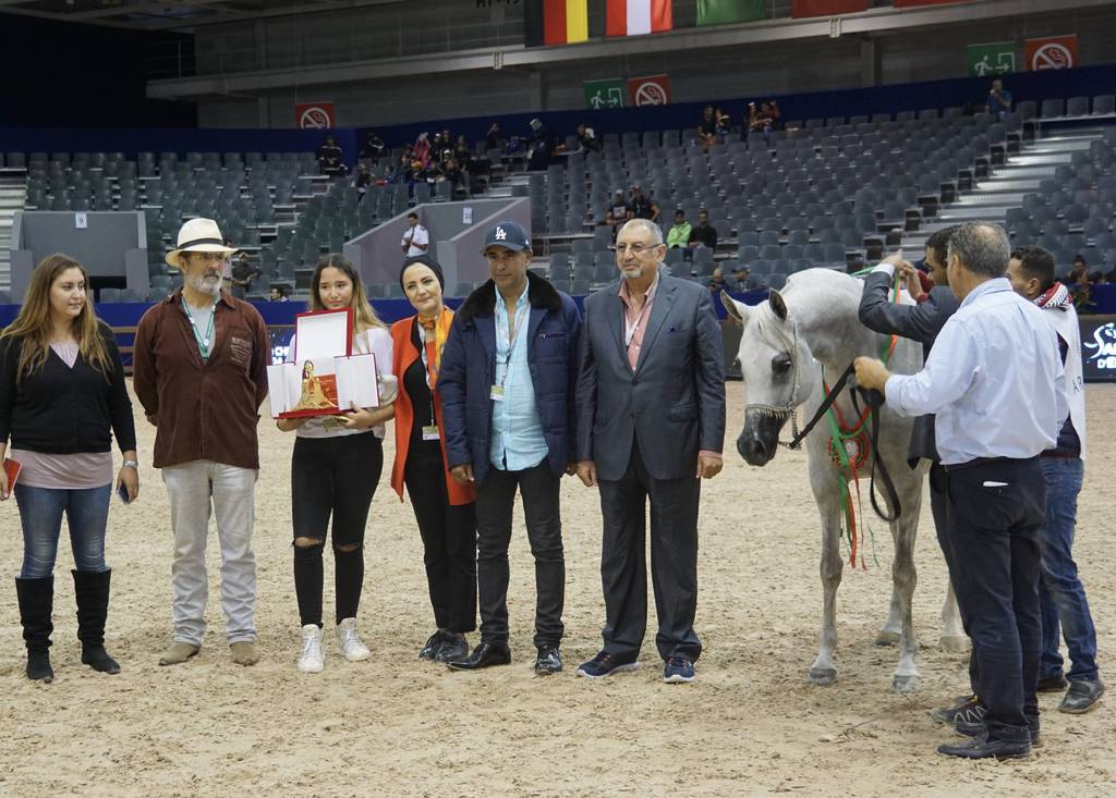 Silver Champion Jr Mare Jenufa De Nautiac by Shanghai EA and out of Jalicia de Nautiac - bred by Bourrasse Rachel and also owned by Mr. Abdelmajid Aboukhadija