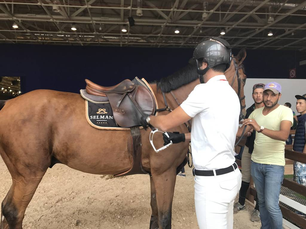 Adelslam getting ready for the show Jumping event.
