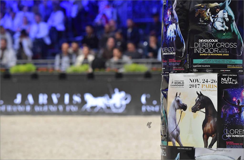 The 2017 Arabian Horse World Championship