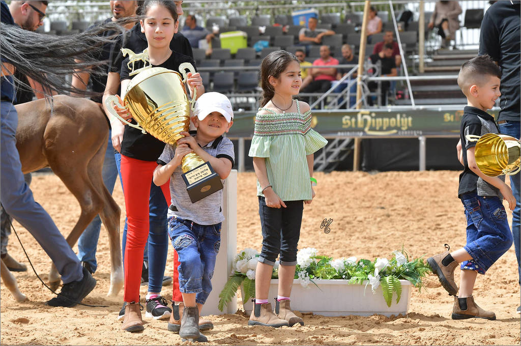 The Galilee Show: Carrying the trophy for Foal Filly Gold Champion Hala al Hasan (TH Hamza X Heelim JFD)