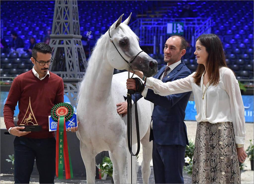Senior Female Gold Champion: Anood Al Nasser