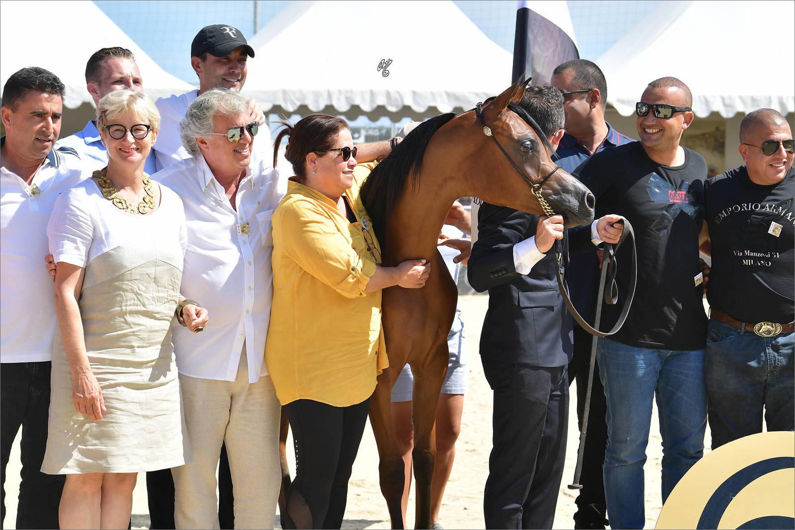 The 2019 Mediterranean & Arab Countries Arabian Horse Championship: MENTON!