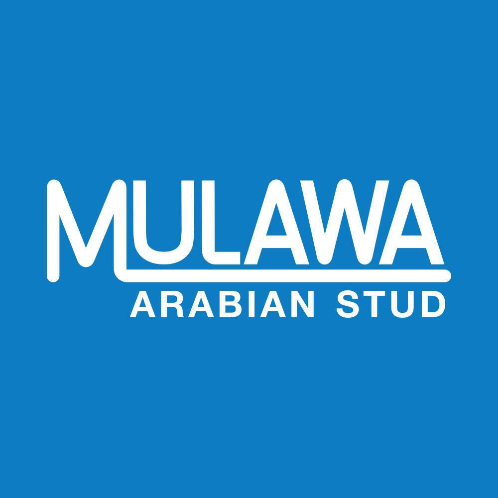 Mulawa Arabian Stud