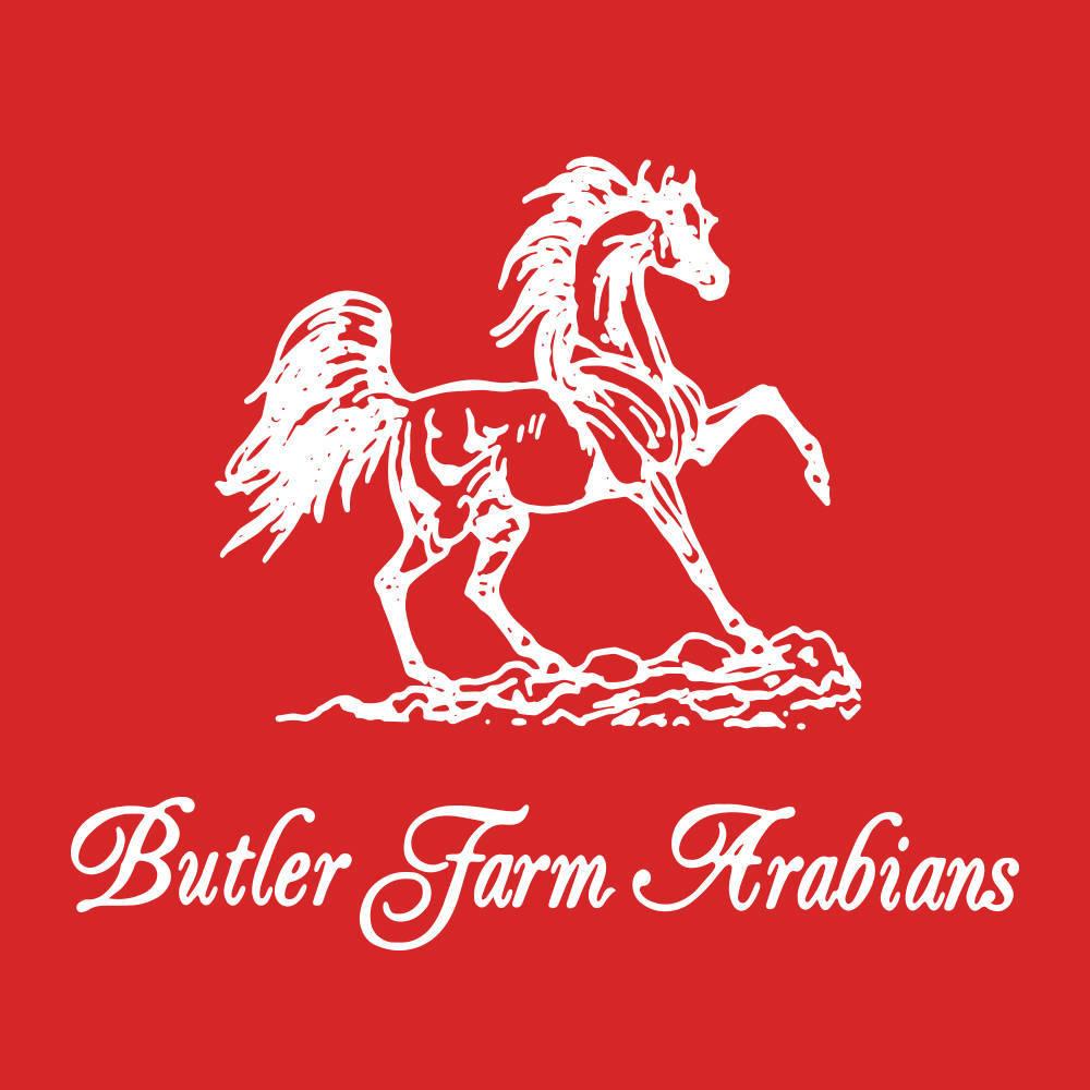 Butler Farm Arabians