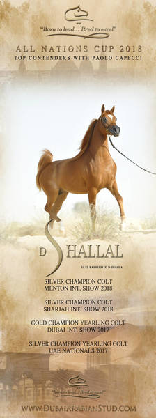 D SHALLAL- All Nations Cup 2018 with Paolo Capecci