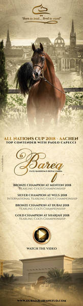 D BAREQ - All Nations Cup 2018 with Paolo Capecci