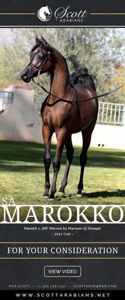 Marokko Style!