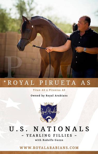 *ROYAL PIRUETA AS with Rodolfo Guzzo