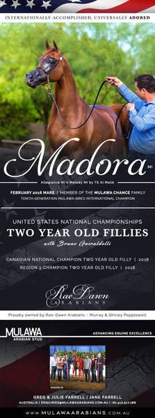 Bringing Her Royal Reign to Tulsa | Canadian National Champion MADORA MI