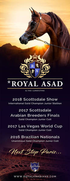 Scottsdale Champion Heads to Paris