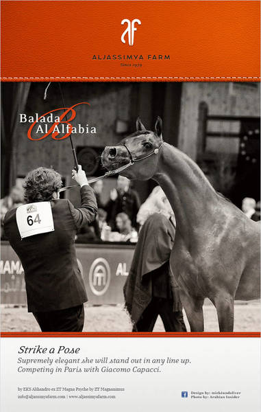 Balada Al Alfabia in Paris Junior Fillies for Aljassimya Farm