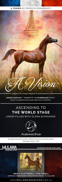 A VISION to Change the World | Paris 2018 for Albidayer Stud