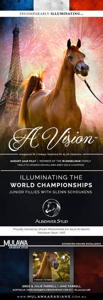 A VISION in Paris | Junior Fillies for Albidayer Stud