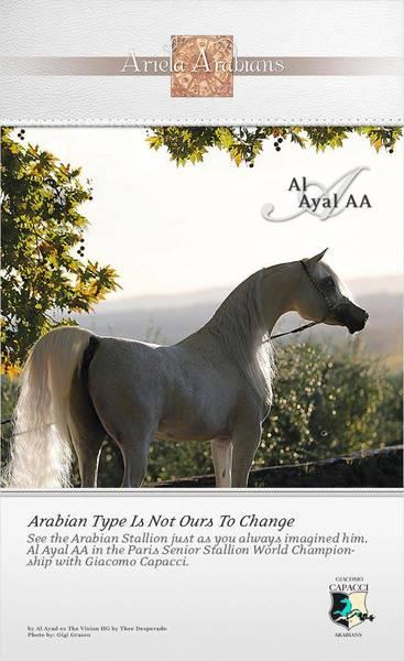 Al Ayal AA. The Ambassador comes to Paris