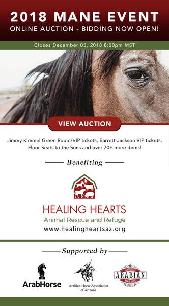 BID NOW! Online Auction for Rescued Horses