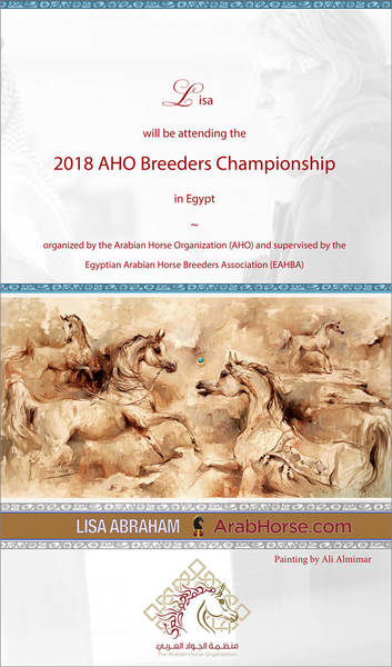 Lisa Abraham will attend the AHO Breeders' Championship in Egypt!
