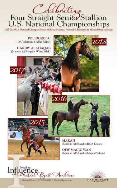 Celebrating Four Straight Senior Stallion U.S. National Championships