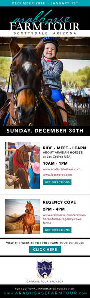 Farm Tour: Sunday Schedule