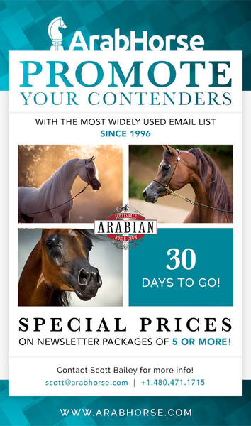 Promote Your Contenders for the Scottsdale Show - 30 Days To Go!!