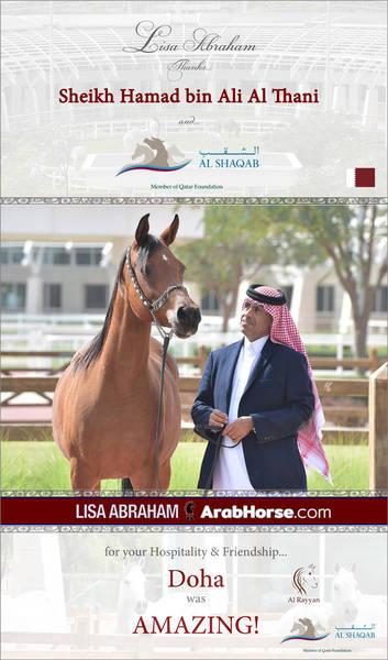 Lisa Abraham THANKS Sheikh Hamad bin Ali Al Thani and Al Shaqab Stud!