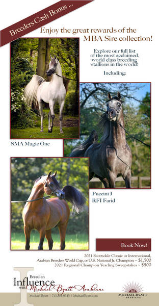 World Class Sires of Michael Byatt Arabians